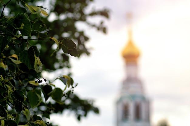 Arbre au coucher du soleil de la cathédrale de printemps