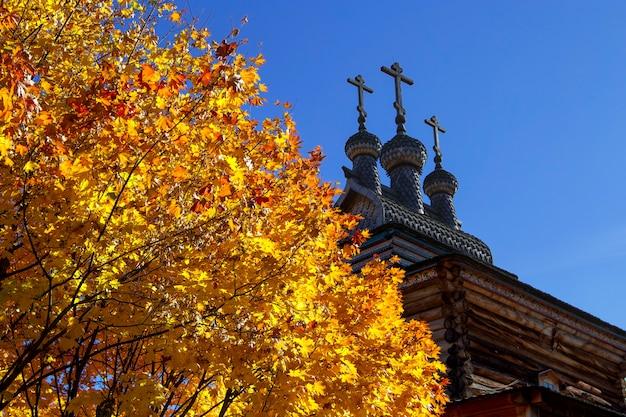 Arbre d'automne avec feuilles orange avec église sur ciel bleu