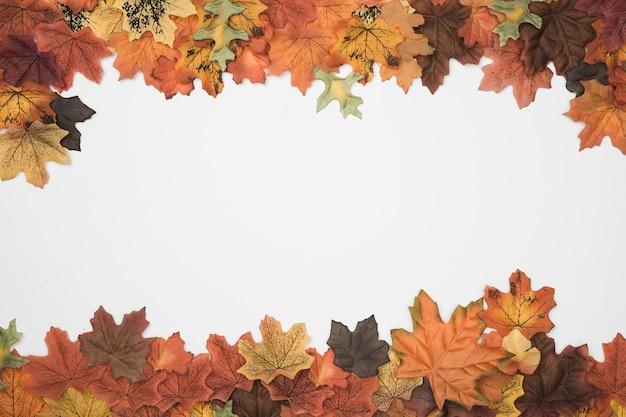 L'arbre d'automne laisse le motif du cadre supérieur