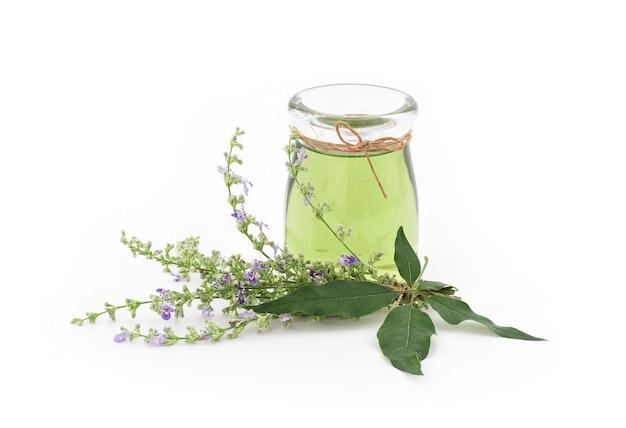 Arbre chaste à cinq feuilles ou fleurs vitex negundo et extraire l'huile de feuilles vertes dans une bouteille isolée sur blanc