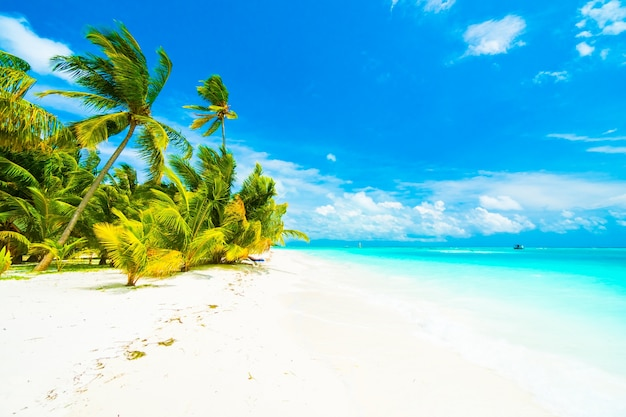 Arbre ciel lagoon resort maldives