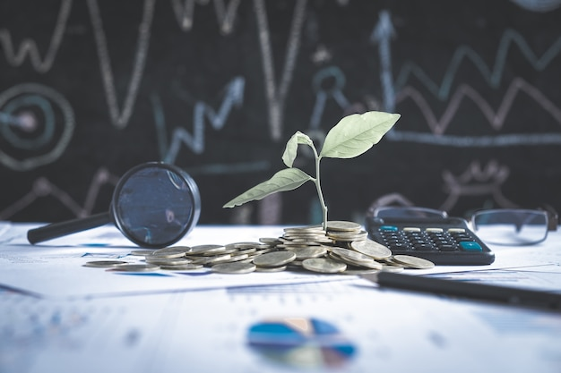 Arbre croissant sur pile de pièces sur rapport graphique financier avec loupe et calculatrice en arrière-plan