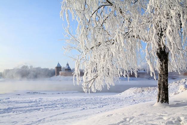 Arbre dans la neige contre la vieille forteresse