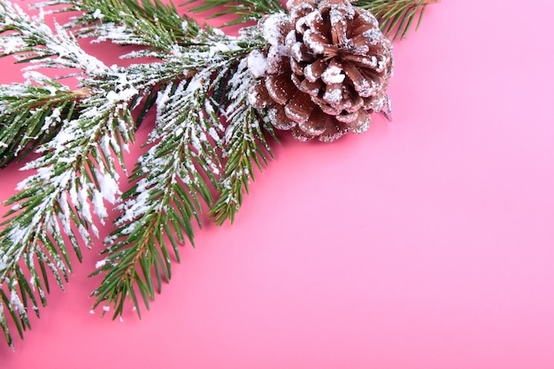 Arbre de noël et des cônes, coffret coloré du nouvel an sur rose. décoration pour de joyeuses fêtes.