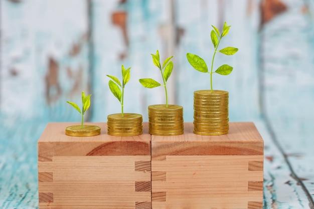 Arbre qui pousse sur la pile de pièces, concept de croissance de l'investissement.