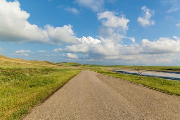 Arbre sec solitaire près de la route près d'un lac asséché un beau paysage avec un ciel bleu de route