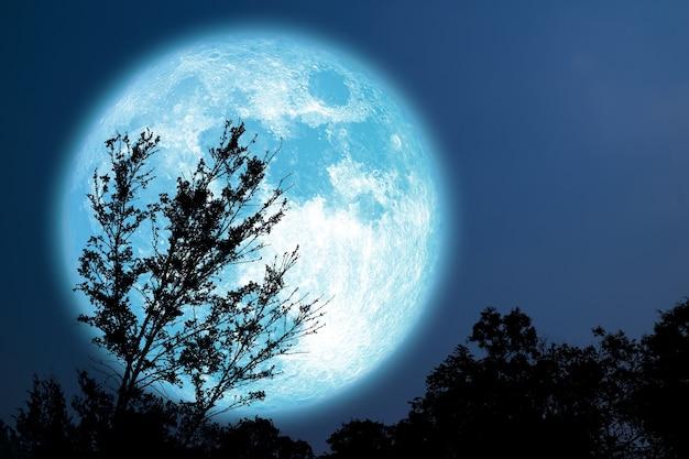 Arbre de silhouette de lune bleue super grain dans le champ sur le ciel nocturne, éléments de cette image fournie par la nasa