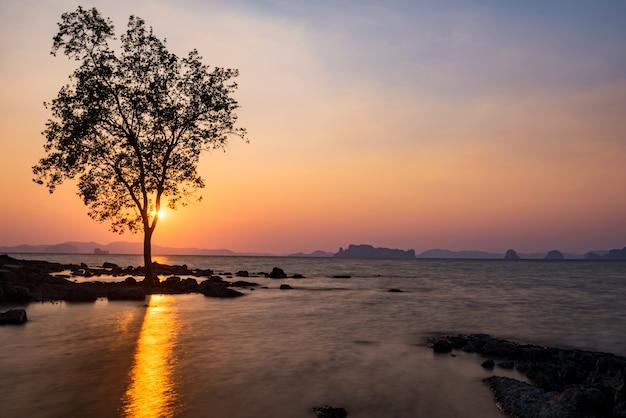 Arbre silhouette et paysage marin au coucher du soleil de l'île de koh kwang autour de klong muang et de la plage de tub kaek à krabi, thaïlande. célèbre destination de voyage des vacances d'été thaïlandaises. paysage marin de mouvement..