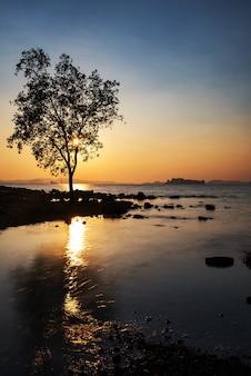 Arbre de silhouette et vague de mouvement et réflexion au coucher du soleil de l'île de koh kwang à krabi, thaïlande. célèbre destination de voyage pour les vacances d'été du siam. paysage marin de mouvement en vue verticale.