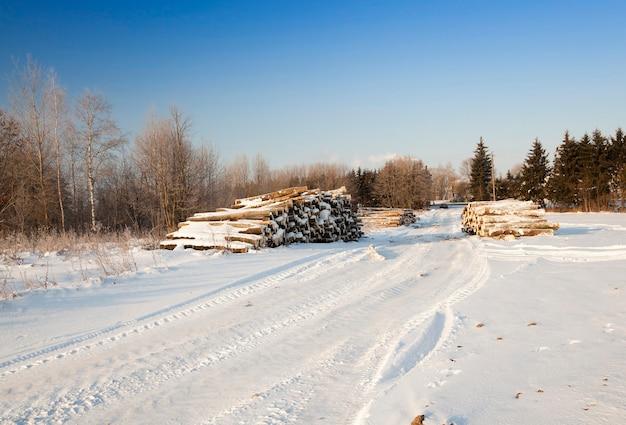 Arbres abattus et empilés ensemble pendant la saison hivernale. couvert de neige