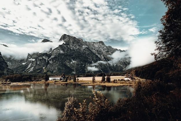 Arbres au bord du lac. paysage naturel