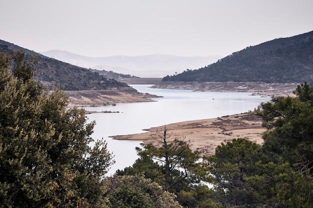 Arbres autour d'un barrage avec peu d'eau