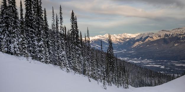 Arbres couverts de neige avec des montagnes en hiver, kicking horse mountain resort, golden, colombie-britannique
