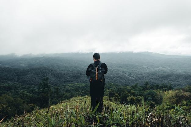 Arbres dans la forêt naturelle et brouillard un jour de pluie