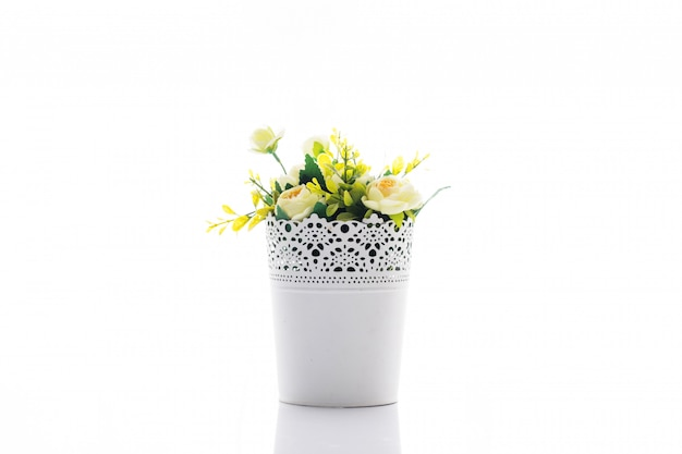 Arbres, fleurs en pots sur blanc
