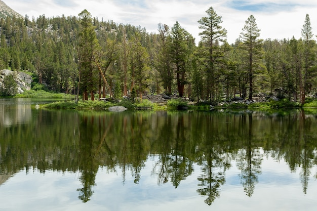 Arbres de la forêt reflétée dans les big pine lakes, californie, usa