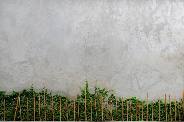 Arbres avec mur de ciment