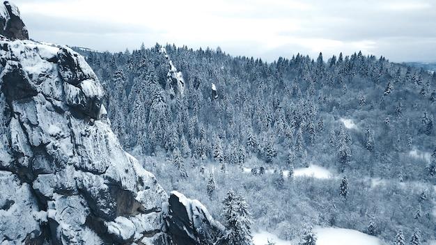 Arbres de neige d'hiver. vue aérienne survoler. tustan