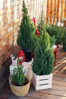 Les arbres de noël se tiennent sur une terrasse confortable à la maison