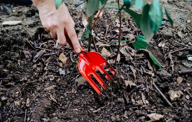 Des arbres plantés à la main pour protéger l'environnement et le système écologique