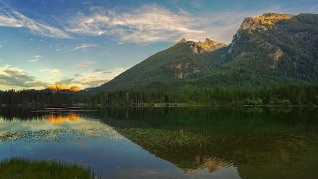 Arbres verts près du lac et de la montagne sous un ciel bleu pendant la journée