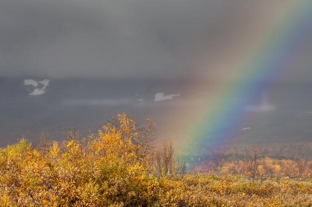 Arc-en-ciel sur la rivière dans les montagnes arctiques d'un parc national de sarek.