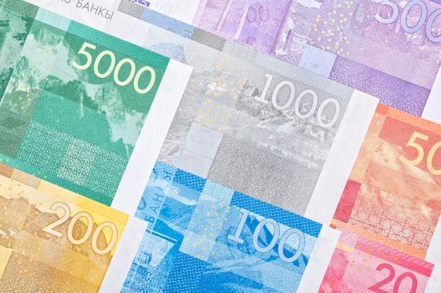 L'argent du kirghizistan un fond d'affaires