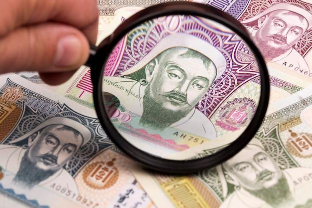 L'argent mongol dans une loupe une expérience en affaires