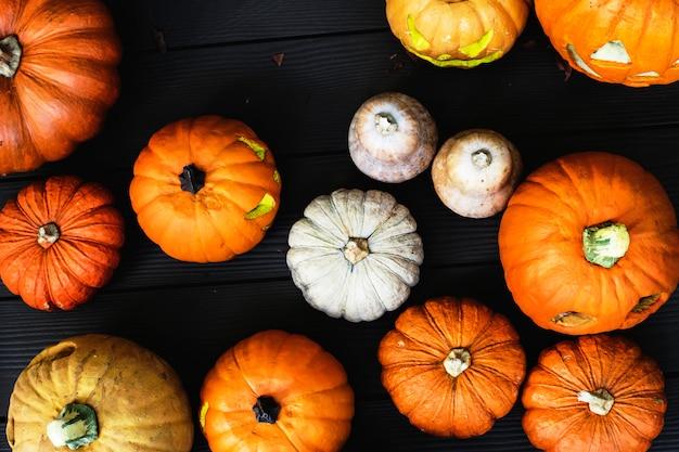 Arial vue de citrouilles d'halloween