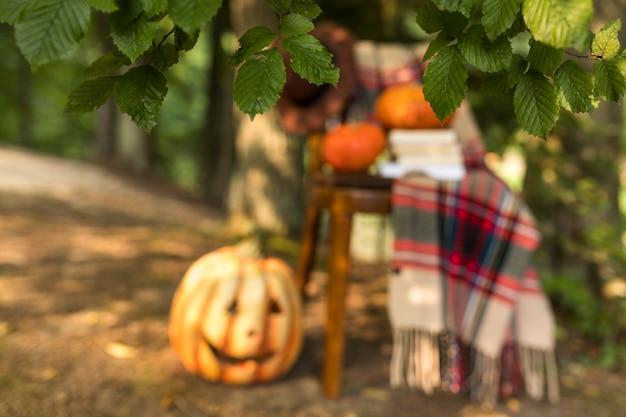 Arrangement d'automne avec couverture et citrouilles sur chaise