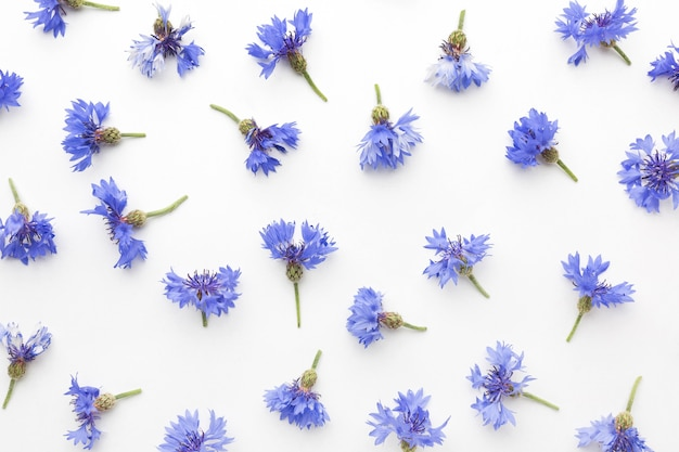 Arrangement de bleuets vue de dessus