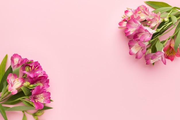 Arrangement de bouquets d'alstroemeria rose à plat