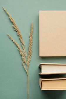 Arrangement créatif avec différents livres