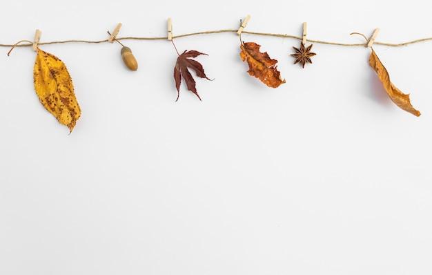 Arrangement avec des feuilles suspendues à une corde à linge