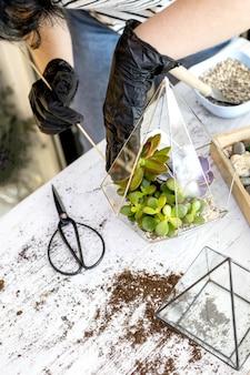 Arrangement de fleuriste féminin succulentes plantes naturelles dans un florarium en verre sur un décor de pierres en gros plan