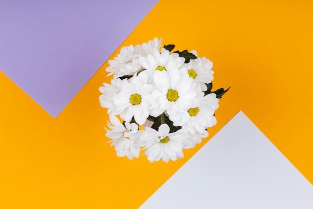 Arrangement de fleurs blanches de printemps avec des cartes vides