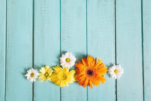 Arrangement de fleurs romantiques sur bois