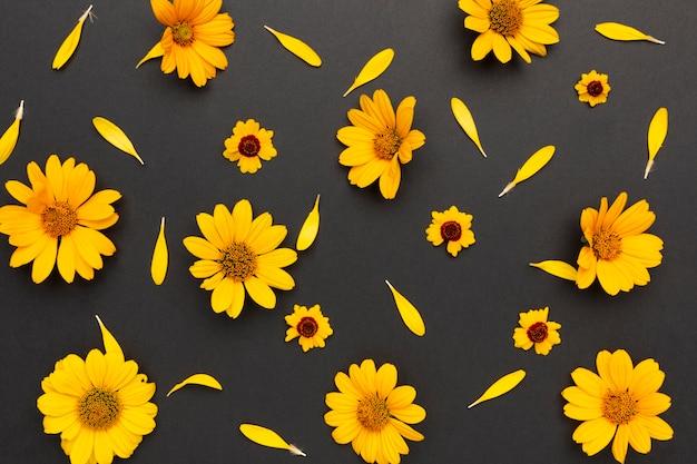 Arrangement de fleurs vue de dessus