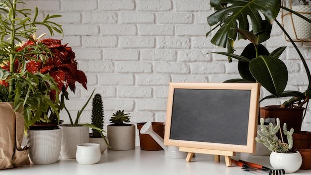 Arrangement de jardin à la maison avec tableau noir