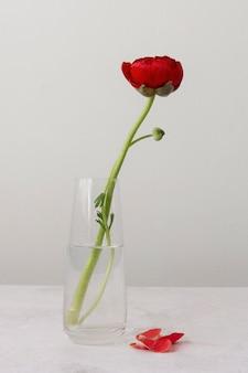 Arrangement de nature morte de fleur intérieure dans un vase