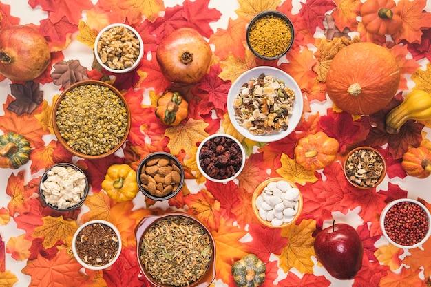 Arrangement de nourriture vue de dessus sur fond coloré