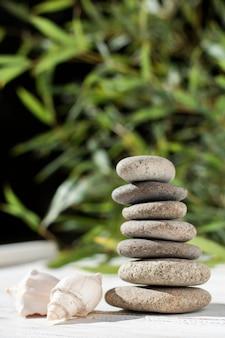 Arrangement avec des pierres de spa et des coquillages