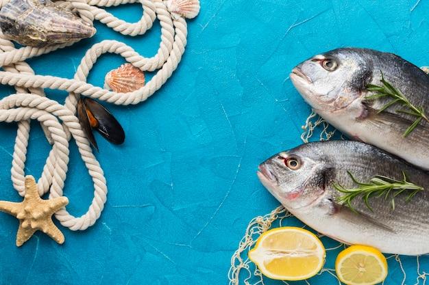 Arrangement de poisson avec vue de dessus de corde