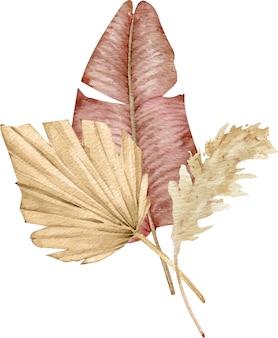 Arrangement tropical aquarelle avec des feuilles de palmier en éventail séchées et de l'herbe de pampa. bouquet exotique.