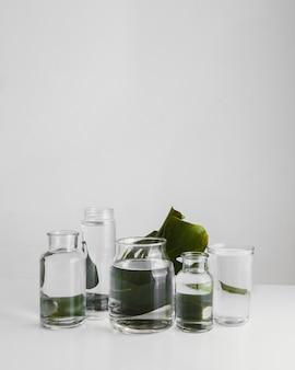 Arrangement végétal minimal abstrait