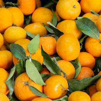 Arrangement de vue de dessus avec des mandarines