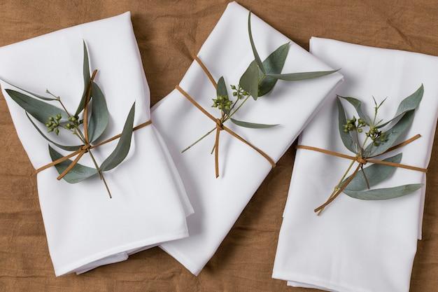 Arrangement de vue de dessus avec des plantes et du tissu