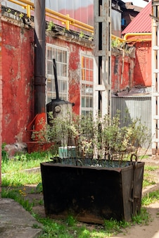 Arrière-cour d'atelier d'une ancienne usine avec végétation ornementale dans une benne preneuse