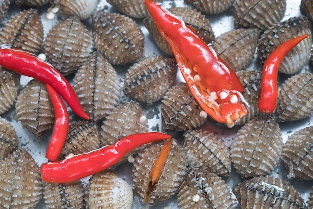 Arrière-plan de coques de sang frais ou de palourdes (tegillarca granosa), coquillages de fruits de mer. comment nettoyer la palourde sanguine en mettant des piments frais dans l'eau imbibées de palourdes à boue.