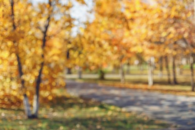 Arrière-plan flou du parc automne avec bokeh. vue défocalisée